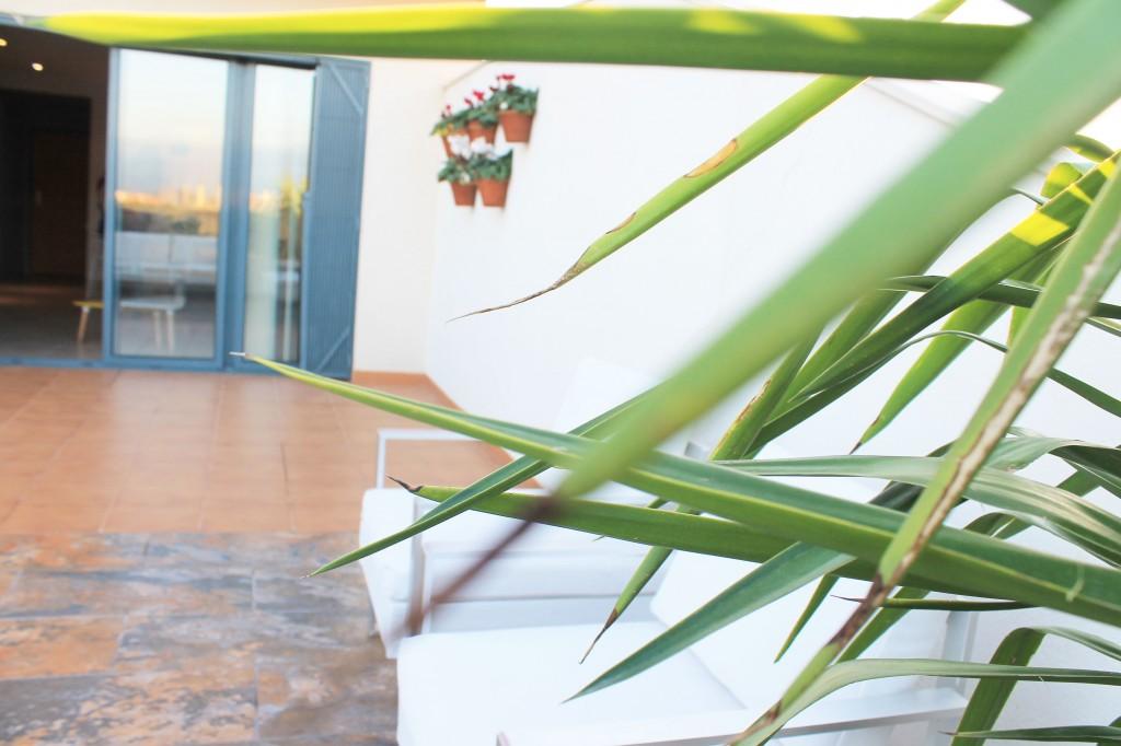 La casa de Miguel-terraza